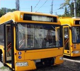 Иностранный опыт организации транспортного обслуживания населения